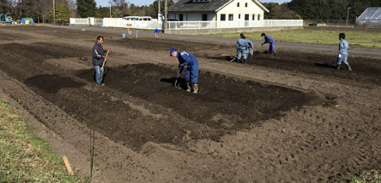 汚泥処理技術から生まれた資源循環型の農園